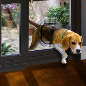 Pet Doors About Us