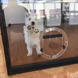 small round dog door