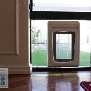 microchip dog door