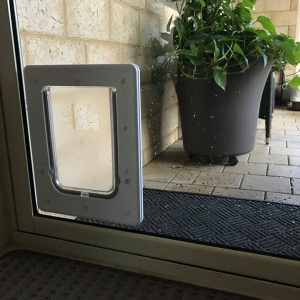 medium dog door