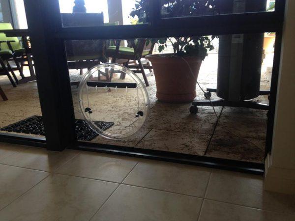 Mandurah dog door access