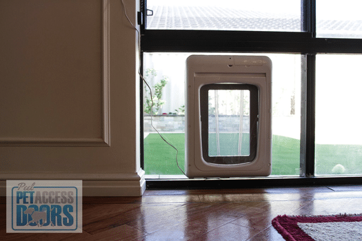 dog pet access door